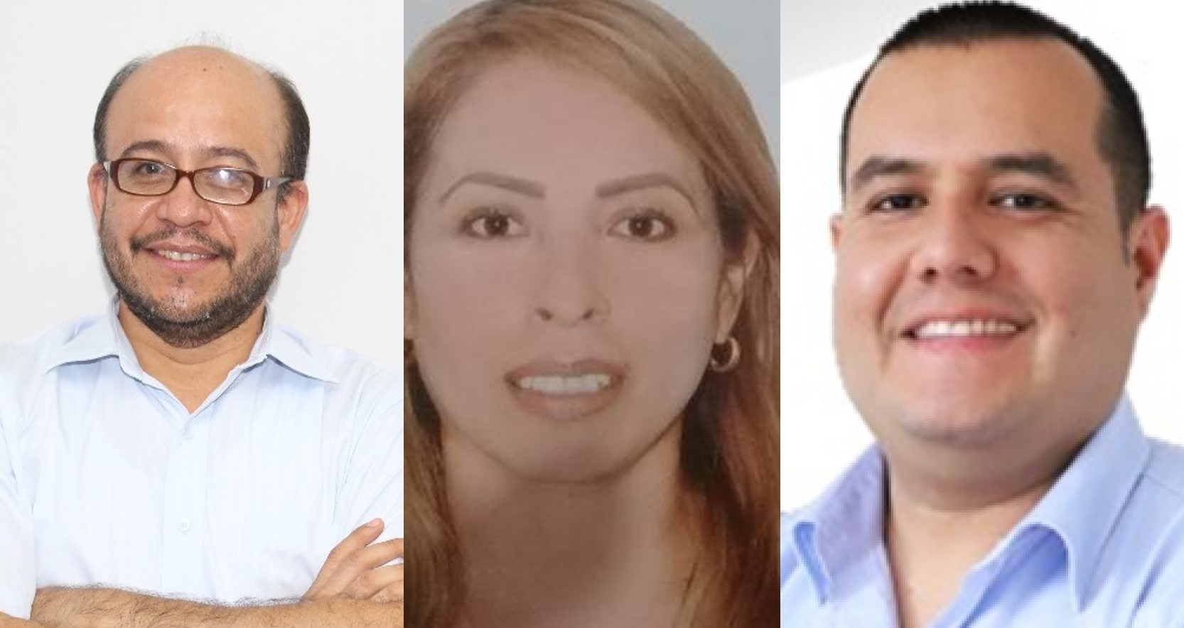 Precandidatos de Acción Popular